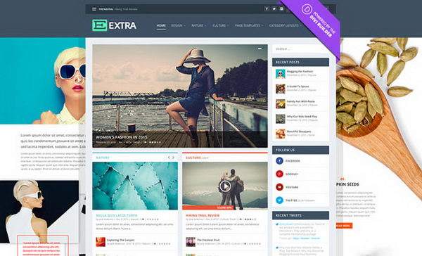 Extra v2.18.6 - премиум тема WordPress для блогов и онлайн-журналов